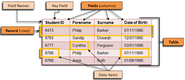 The components of a database table