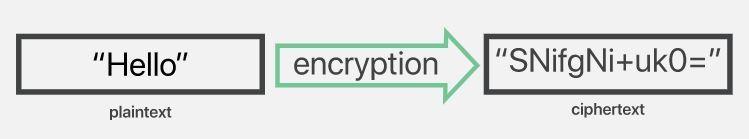 Encryption Image 2